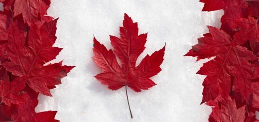 31.08 - Canada