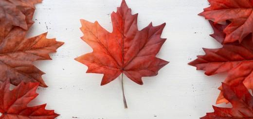 Canadian Flag_283736111